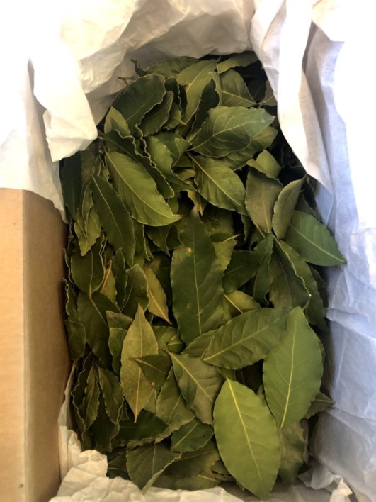 DIY Spring Bay Leaf Wreath -  guide to creating a rustic heart green wreath with fresh bay leaves   Heartenedhome.com #springwreath #DIY